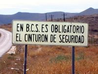 In Baja California Sur, it is required to wear seat belts